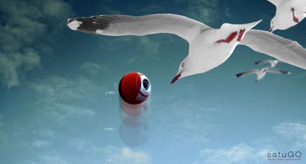 satugo_birdcam.jpg