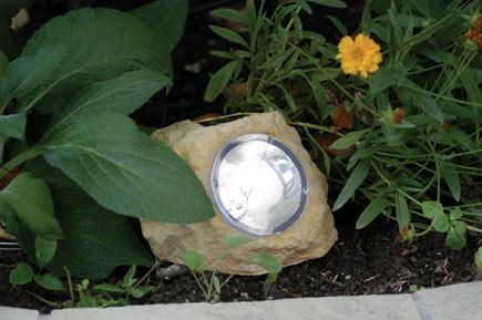 solar-garden-spotlight2.jpg