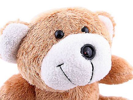 usb-bearcam1.jpg