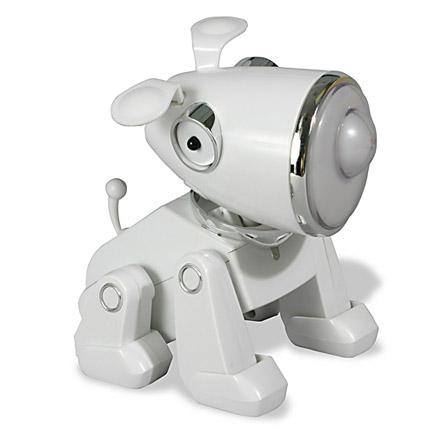 hippop-petdog.jpg